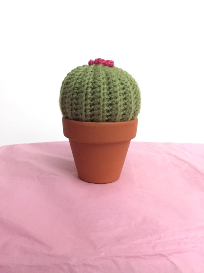 not your average crochet - barrel cactus