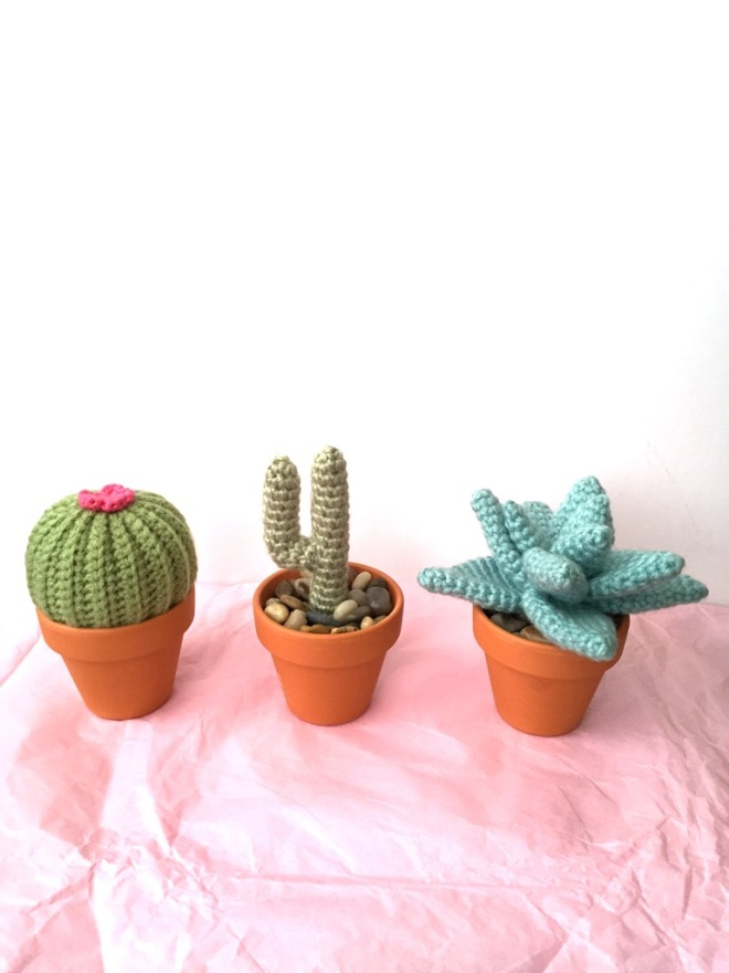 IMG_3960not your average crochet - cacti