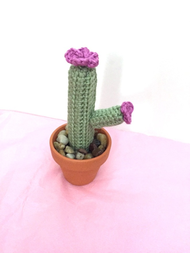 not your average crochet - cactus