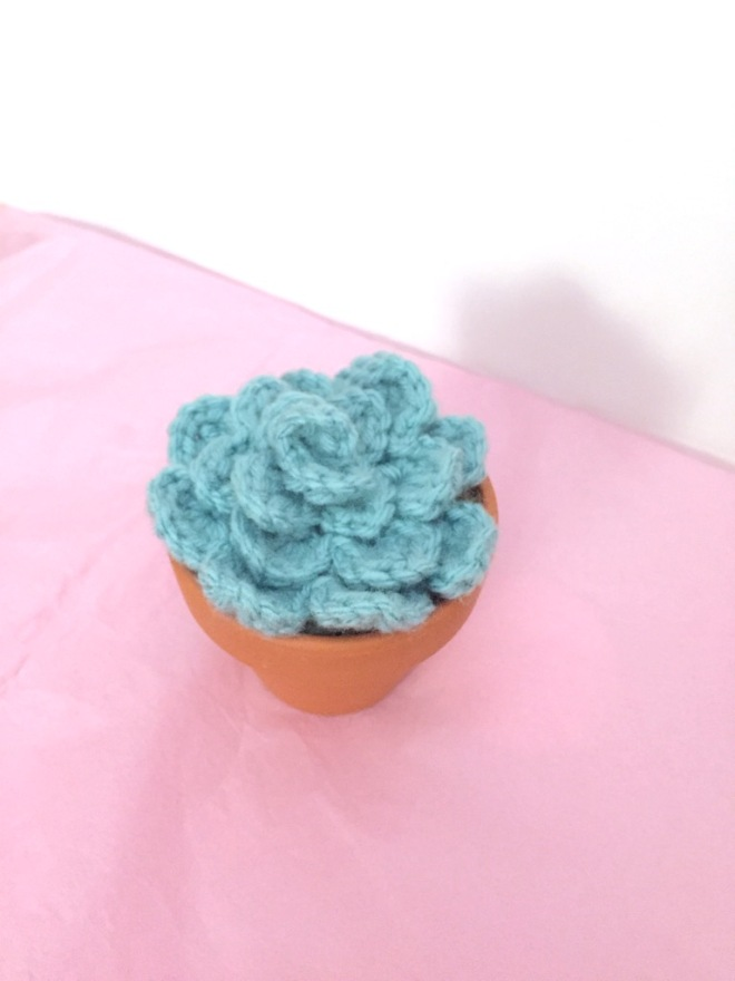 not your average crochet - succulent
