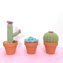 not your average crochet - cacti trio 2